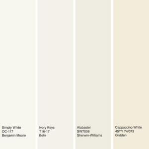رنگ سال ۲۰۱۶ – ۱۳۹۵ رنگ سفید استخوانی انتخاب شد