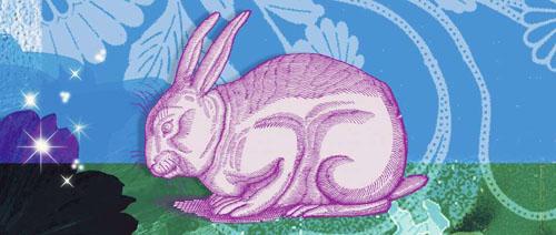 , طالع بینی خرگوش , طالع بینی متولد خرگوش , طالع بینی سال خرگوش , طالع بيني سال خرگوش , طالع بینی سال خرگوش 1366 , طالع بینی سال خرگوش 1378 , طالع بینی متولدین سال خرگوش , طالع بینی چینی سال خرگوش , طالع بینی متولد سال خرگوش , طالع بینی چینی خرگوش , طالع بینی ازدواج سال خرگوش , سال خرگوش در طالع بینی چینی , فال و طالع بینی سال خرگوش , طالع بینی هندی سال خرگوش , طالع بینی مرد متولد سال خرگوش , طالع بینی متولدین خرگوش ,